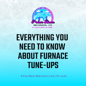 """A graphic with an icy blue and white background and black words that says, """"Everything You Need To Know About Furnace Tune-Ups."""""""