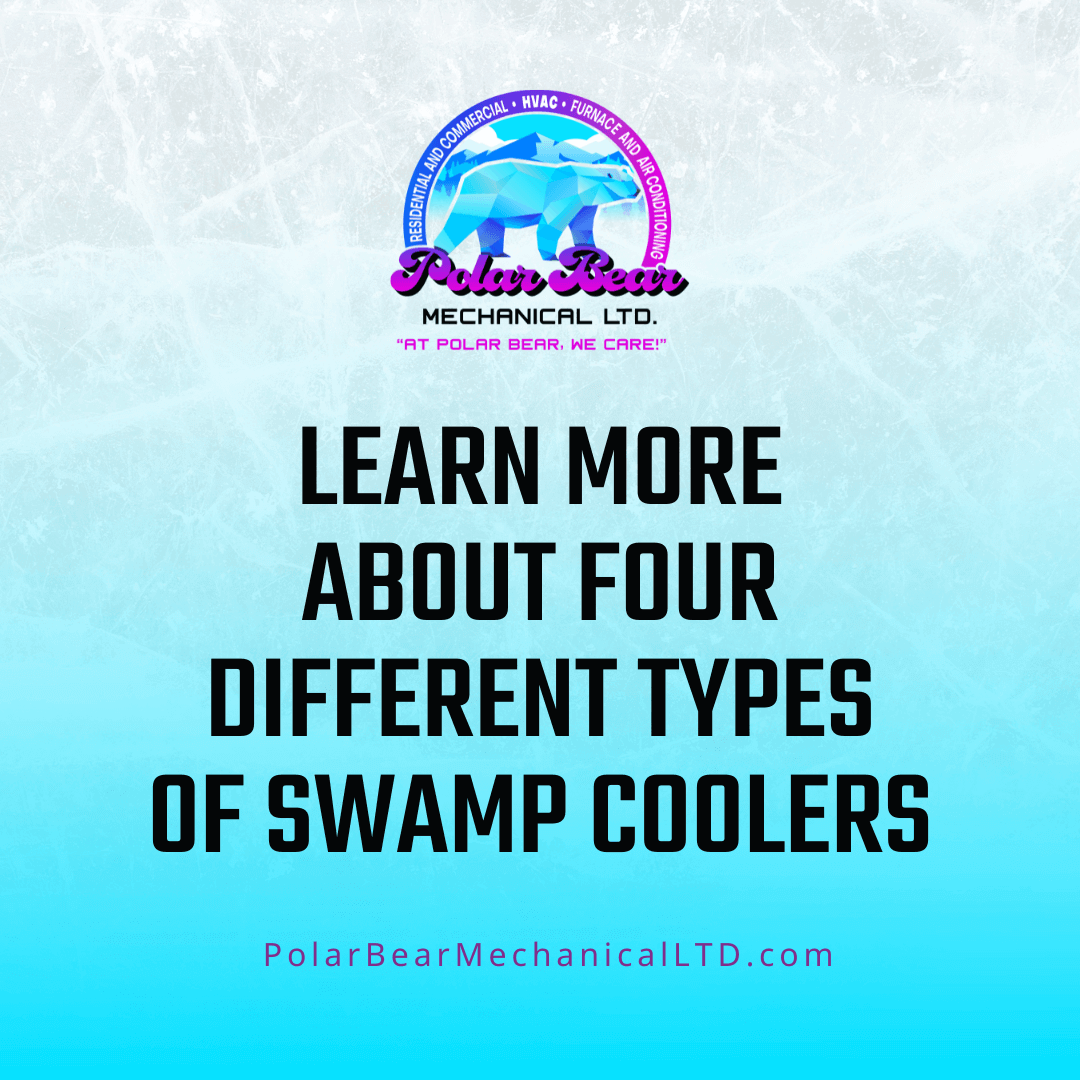 """A graphic with blue and white ice as the background and black letters in the center that reads, """"Learn More About Four Different Types Of Swamp Coolers."""""""